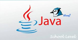 java school level